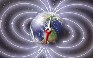 Куда бежит магнитный полюс