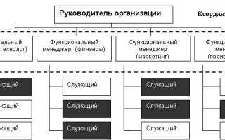 Линейно функциональная организационная структура управления предприятием