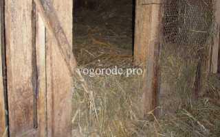 Просторное стойло для домашней козы