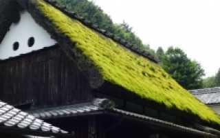 Зеленые крыши технология устройства травяной кровли