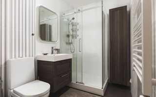 Туалет с душевой кабиной дизайн