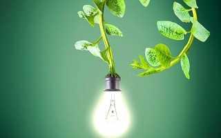 Исследовательский проект Электричество для детей подготовительной группы