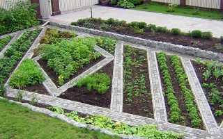 Как правильно сделать грядки на огороде