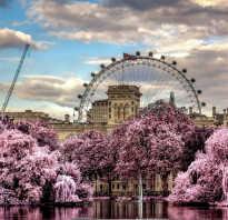 Гринвичский парк красота об руку с историей