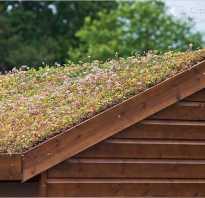 Рулонный газон на крыше технология