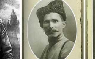 Василий Чапаев краткая биография и интересные факты