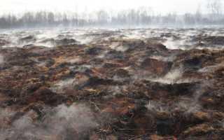 Торфяные пожары и их профилактика