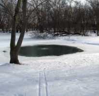Как сделать аэрацию пруда зимой своими руками