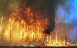Составляющие пожара и взрыва